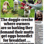 Daily Mail Page 2