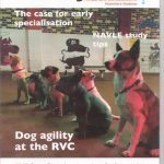 The Journal of the Association of Veterinary Students