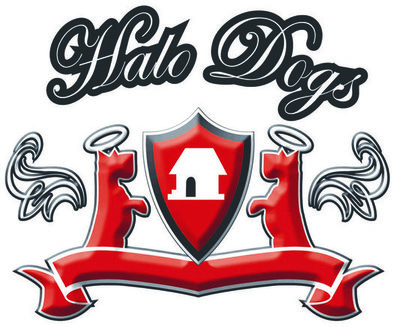dog day care london | halo dogs