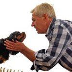 puppy daycare London