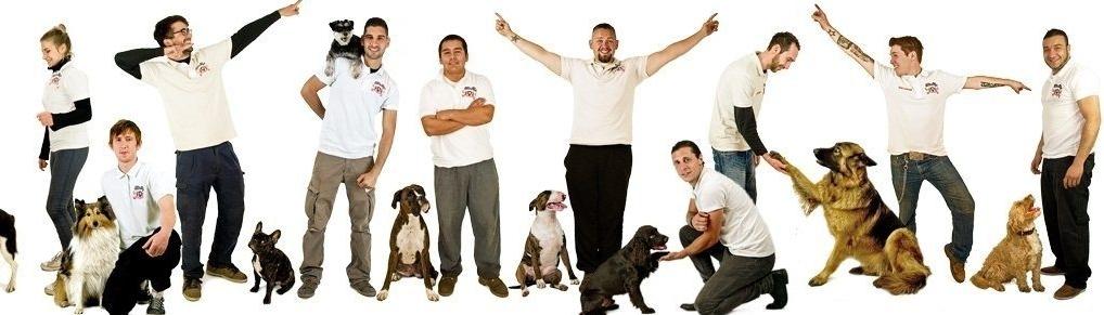 dog daycare London